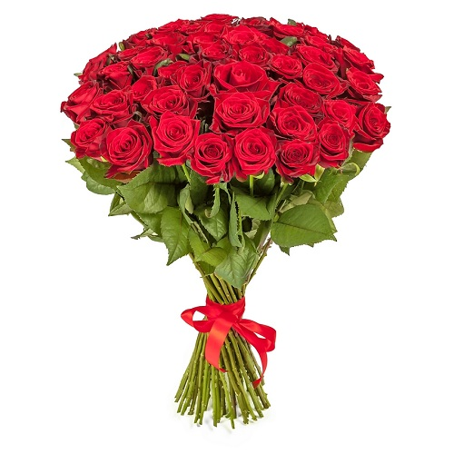 Букет из 51 красной розы, 70 см